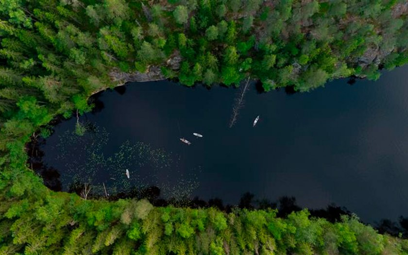 A lake and forest pictured from above.