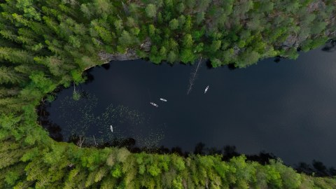 Aerial view of the forest lake in Nuuksio National Park. Three people are stand up paddling..