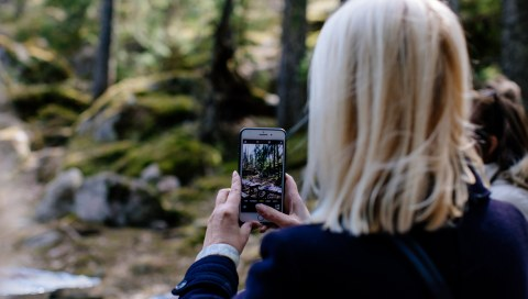 A woman with her back to the viewer is photographing the forest in front of her with a cell phone camera.