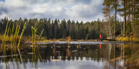 A woman in a red jacket sits on a pier on a forest lake in Nuuksio National Park.
